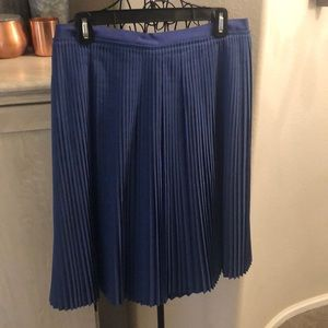 Banana Republic Blue Pleated Skirt